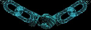 Investors/Partners